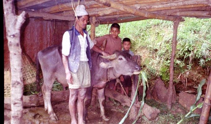 nepal_animal4